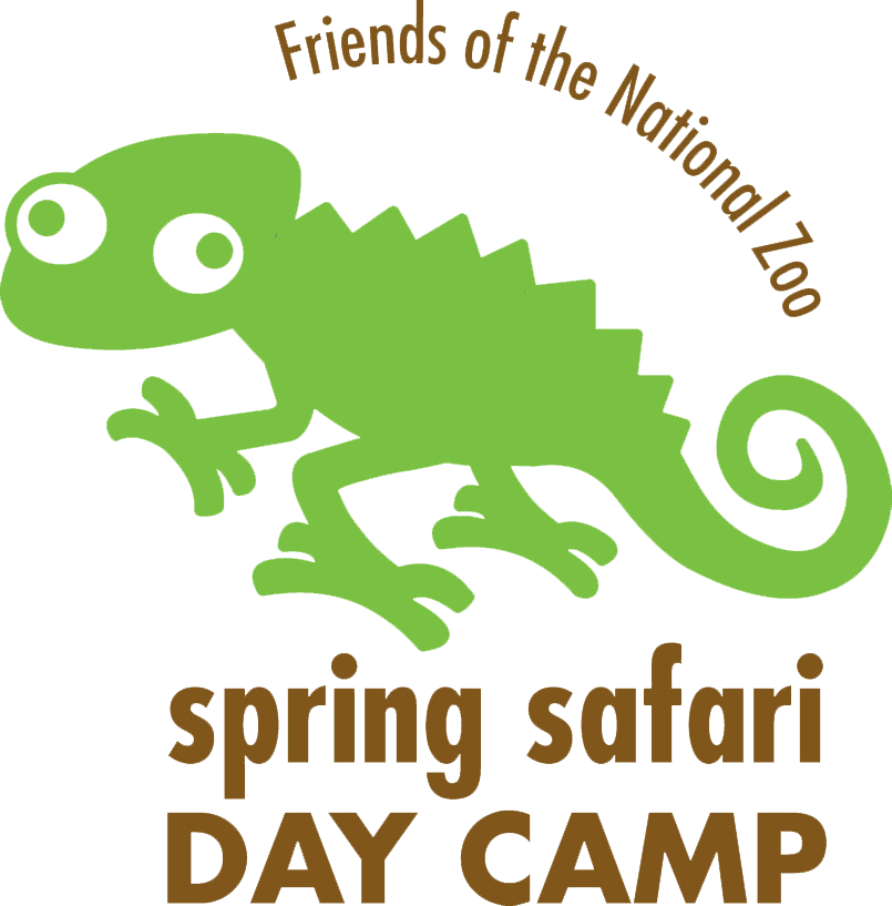 A guide to Spring Break camps in Washington, DC