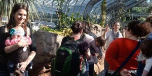 snugglers-at-United-States-Botanic-Garden