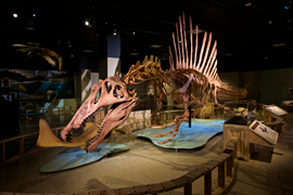 Spinosaurus-at-HQ_474FINAL
