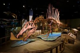 Spinosaurus-at-HQ_474FINAL