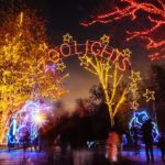 Guest Post: ZooLights and more fun at the National Zoo