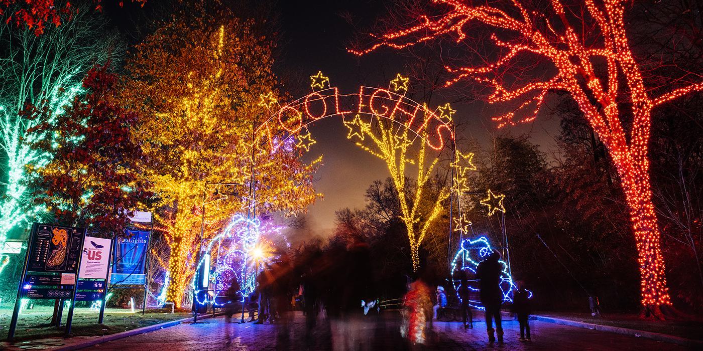 zoolights2