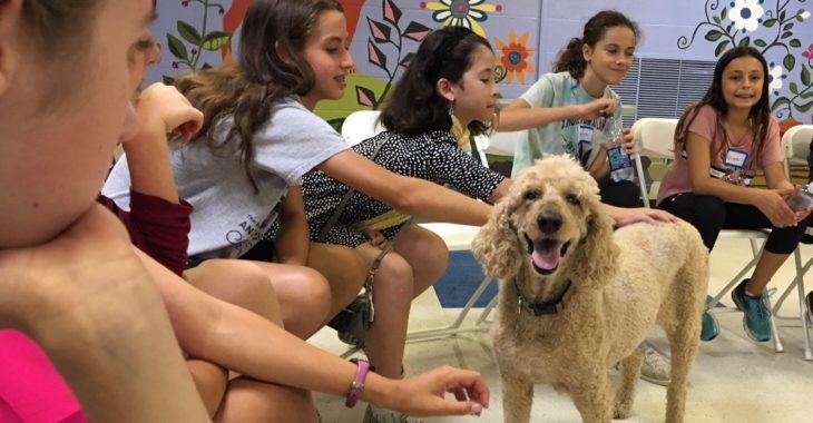 Caring kids special winter events at Humane Rescue Alliance